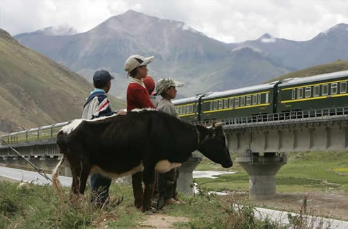 Tibet train seen by tibet people